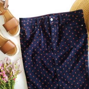 Pilcro & The Letterpress | Velvet Polka Dot Skirt